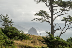 Ecola State Park, Oregon, USA (takasphoto.com) Tags: apsc america cannonbeach eeuu ecola ecolastatepark estadosunidos fotografíadepaisaje fuji fujixt1 fujixt1fujifilm fujifilm fujinon fujinonlensxf18135mmf3556rlmoiswr fujinonxf18135mmf3556rlmoiswr landscape landscapephotography landschaftsfotografie lens mar mare mer mirrorless mirrorlesscamera nature noroestepacífico noroestedelpacífico northamerica or ocean oceansea oceano oregon outdoor pnw pacificnorthwest pacificocean paisaje pazifischernordwesten photography rock rocks rockymountains sea seascape statepark tillamookhead tillamookrocklighthouse travel travelphotography traveling travels usa unitedstates unitedstatesofamerica viaje water westcoast wybrzeżepółnocnozachodnie xmount xt1 xtranscmosii xtransii xf18135 пацифичкисеверозапад アメリカ合衆国 フジノン フジ