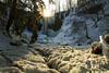 Shelf Ice (Matt Champlin) Tags: monday beautiful ice icy gorgeous frozen water waterfall nature sun sunrise morning peace peaceful winter hiking adventure fun life landscape skaneateles flx fingerlakes canon 2018 travel hike