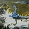 FLOATING TO DUSK....Acrylic Painting (Heidi's_PaSSioNs ღ) Tags: cygnets reflections swan painting acrylics