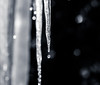 Icicles 01 (Podsville) Tags: february ice icicle melting winter