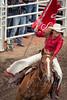 Calgary Stampede 2016 (tallhuskymike) Tags: calgarystampede rodeo cowgirl horse alberta 2016 stampede event outdoors calgary