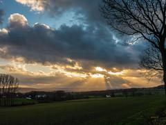 Landscape (achim-51) Tags: landschaft landscape himmel baum feld sonne sun panasonic dmcg5 lumix