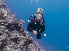 EPV0548 (throughmyviewfinder) Tags: diving marsashagra redsea