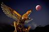 多納 鷹之谷 月全蝕  BLOOD MOON (郭以德) Tags: 月全蝕 夜曝 多納 老蛙 15mm 星星 月亮 野外 橋