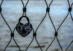 Happy Valentines Day bokeh! (Jo Evans1- On and off for a while - really busy!) Tags: happy valentines day february 14 romantic lovers bokeh wednesday hbw water padlock bridge mesh fencing