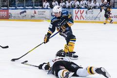 2018-02-02 Herning vs Herlev-534 (Daniel Stentz) Tags: herlev eagels sjælland isdk ishockey icehockey hockey herning herningbluefox bluefox danmark denmark kvikhockeyarena hockeyphoto