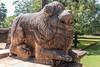 J3. Polonnaruwa - Salle du Conseil (Darth Jipsu) Tags: carving sacred landmark srilanka royal unesco elephant polonnaruwa king lion ceylon court ceylan architecture parakkramabahu column rajasabhamandapaya historic royalcourt northcentralprovince lk ruins cholas