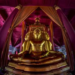 Thailand - Bangkok - Ancient City 81_Temple interior_sq_DSC6298 (Darrell Godliman) Tags: thailandbangkokancientcity81templeinteriorsqdsc6298 fisheye 8mm samyang squareformat bsquare squares sq buddha temple