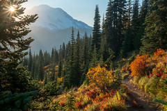 Tipsoo Lake/Naches Peak Loop (Laura Jacobsen) Tags: fallcolor hiking mtrainier mtrainiernationalpark nachespeakloop tipsoolake washington