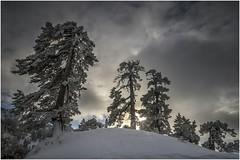 Larra-Belagua001 (Fermin Ezcurdia) Tags: larra belagua navarra pirineo nieve pyrenees esquinordico arlasarette anie