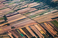 Multiple Divisions (Matt Molloy) Tags: mattmolloy photography farmland crops rice fields lines rectangles water town village puzzle trees roads powerlines birdseyeview onaplane flying above thailand landscape countryside lovelife