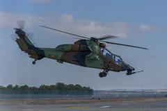 TLP 2018-1 (I) (Diaz269) Tags: ha2801 eurocopter tigre ec665 eurocopterec665 eurocopterec665tigre helicoptero eurocopteralbacete los llanos albacetelosllanos base aerea baseaerea baseaereadealbacete castilla la mancha lamancha castillalamancha españa spain europa europe luis díaz luisdíaz díaz269