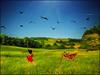 Allegria (bdira3) Tags: dream happiness freedom child running grasshopper field surreal summer wind