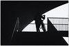 girl in black & white (stevefge) Tags: bridge gelderland nijmegen oversteek bridges people candid street girls bicycles bikes fiets silhouette blackandwhite bw zw zwartwit monochrome contrast stairs steps arch railings nederland netherlands nl nederlandvandaag reflectyourworld minimal