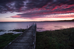 Summer's last morning (stevecart84) Tags: colac lakecolac jetty pier sunrise longexposure water reeds nature outdoors nikon d7200 cokin