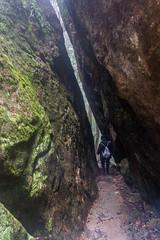 Chasm (palbion) Tags: majellaalbion springbrook queensland australia au