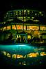 Night Life (Thomas Hawk) Tags: grandwailea hawaii maui wailea waldorfastoria waldorfastoriagrandwailea pool swimmingpool fav10