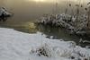 Kõrkjad (Jaan Keinaste) Tags: pentax k3 pentaxk3 eesti estonia loodus nature vaskjalaveehoidla lumi snow vesi water kõrkjad rushes