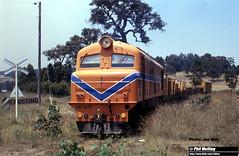 J551  XB1017 16 December 1981 leaving Nannup (RailWA) Tags: railwa philmelling joemoir xb1017 nannup