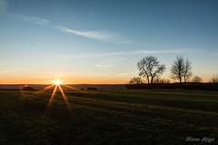 """""""Fin de journée sur Ormersviller"""" (regisfiacre) Tags: coucher soleil paysage landscape sunset sundown lorraine moselle france nuages clouds nature canon 5div mark iv 4 plein format full frame 24105mm l ciel sky himmel sun sonne ormersviller pays de bitche vosges du nord"""