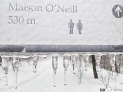 180221-10 L'ère de glace (clamato39) Tags: pancarte sign glace ice vermont winter hiver neige snow provincedequébec québec canada