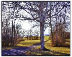 dirt road 2 (jsleighton) Tags: dirt road tree mountains field farm landscape