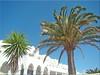 Fuerteventura - Costa Calma (Jorbasa) Tags: jorbasa hessen wetterau germany deutschland geotag fuerteventura atlantischerozean kanarischeinsel canaryisland insel island wasser meer sea water palmen palm landschaft landscape spanien spain