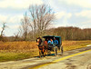 The Way Home (Hope2b) Tags: rural backroad amish amishcountry ohio