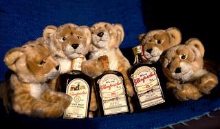 All Snow Leopards Love Medicine