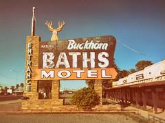 Stag Motel (Thomas Hawk) Tags: america arizona buckhornbaths mesa usa unitedstates unitedstatesofamerica motel neon stag us fav10 fav25 fav50 fav100