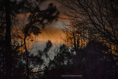 The Blue Patch (Photographybyjw) Tags: the blue patch strong broken clouds create some odd colors this beautiful sunset north carolina photographybyjw rural country trees foliage usa