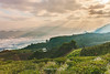 _J5K1455.0118.Bản Dọi.Tân Lập.Mộc Châu.Sơn La. (hoanglongphoto) Tags: asia asian vietnam northvietnam northwestvietnam landscape scenery vietnamlandscape vietnamscenery vietnamscene mocchaulandscape hdr nature morning sky clouds ray rays sunrays hillside sunlight sunnymorning valley canon canoneos1dsmarkiii canonef2470mmf28lisiiusm tâybắc sơnla mộcchâu tânlập bảndọi phongcảnh phongcảnhmộcchâu phongcảnhtâybắc buổisáng bầutrời mây sườnđồi xẹc tiasángmặttrời nắng nắngsớm thunglũng đồichè teahill mountainouslandscape