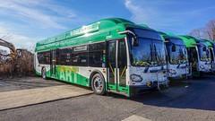 Arlington Transit ART 2017 New Flyer Xcelsior XN40s (MW Transit Photos) Tags: arlington transit art new flyer xcelsior xn40