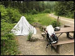17071820301.jpg (Rooster on Trails) Tags: posts iphone 2017070401 fotoz color book2 flickr 43 northbend washington unitedstates us