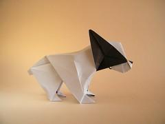 French Bulldog - Fuchimoto Muneji (Rui.Roda) Tags: origami papiroflexia papierfalten chien dog perro cão cachorro french bulldog fuchimoto muneji