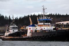 2018-02-17 Tractor Tugs Millennium Dawn & Earl W Redd (2048x1360) (-jon) Tags: anacortes fidalgoisland sanjuanislands skagitcounty skagit washingtonstate washington salishsea pnw pacificnorthwest pacifcocean pacifc ocean curtiswharf guemeschannel towboat tug tugboat ship boat vessel tractortug millenniumdawn starlightpnw earlwredd olympictugbarge harleymarineservices a266122photographyproduction