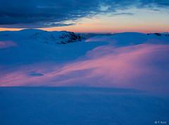 Arctic view (veronika.sund) Tags: storlitinden februar2018 vinterlandskap vinterlys sunset arctic winter winterwonderland blue pink troms norway view ol olympusomd