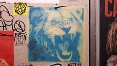Sunfigo... (colourourcity) Tags: graffiti streetart streetartnow streetartaustralia streetartmelbourne burncity melbourne colourorucityburncity awesome nofilters original colourourcity sunfigo lion