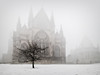 Cathedral in the mist (D4vidL) Tags: lincoln cathedral lincolnshire fog mist winter tree snow canon eos m3 efm 1122mm