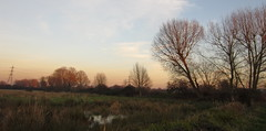 """Leyton Marshes (My wet reflections in """"andressolo"""") Tags: london hackney nature marshes trees dusk"""