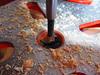 IMG_0775 1-11-2018 (PGK88) Tags: drill drillpress drillingmachine machine drillbit industrial equipment closeup metal sawdust shavings wood woodworking 2018 365 pgk88 object stilllife