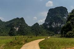 Poslední úsek cesty k jeskyni Nguom Ngao (zcesty) Tags: vietnam20 skála krajina cesta vietnam dosvěta caobằng vn