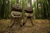 嵐山竹林 - Arashiyama Bamboo Grove (Hachimaki123) Tags: 日本 japan kyoto 京都 嵐山竹林 嵐山 竹林 竹 arashiyamabamboogrove arashiyama bamboogrove bamboo
