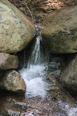 IMG_0664 (comtrag) Tags: flumegorgenh flumegorge nh newhampshire lincolnnh