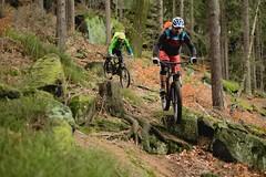 Zweimal Gequirltes (all martn) Tags: elbsandsteingebirge elbsandstein mtb all mountain trail bike riding singletrack