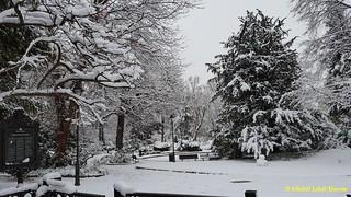 1 - Le Parc de La Planchette sous la neige