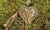 Lost & Found (Through Serena's Lens) Tags: lostfound weeklythemechallenge canoneos6dmarkii moss green gold dof button heart hearts