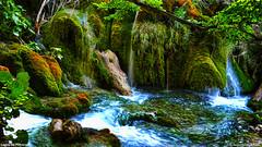 Lagos de Plitvice (wuploteg1) Tags: plitvička jezera lagos de plitvice croatia croacia hrvatska europa europe
