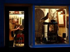 Barber at work (Jaedde & Sis) Tags: barber shop ærøskøbing through window challengefactorywinner thechallengefactory