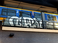 Graffiti (oerendhard1) Tags: graffiti vandalism illegal streetart urban art rotterdam train rdam centraal cry oerendhard